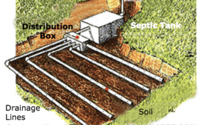 Drainage Field Illustration
