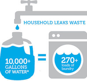 Household Leaks Can Waste Lots of Water